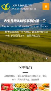 农业手机欧宝体育app下载地址建设