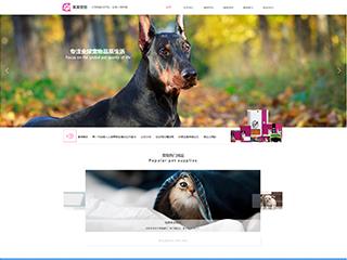 宠物用品欧宝体育app下载地址建设模板