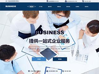 工商财务代办欧宝体育app下载地址建设模板